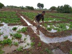 06_irrigazione.jpg
